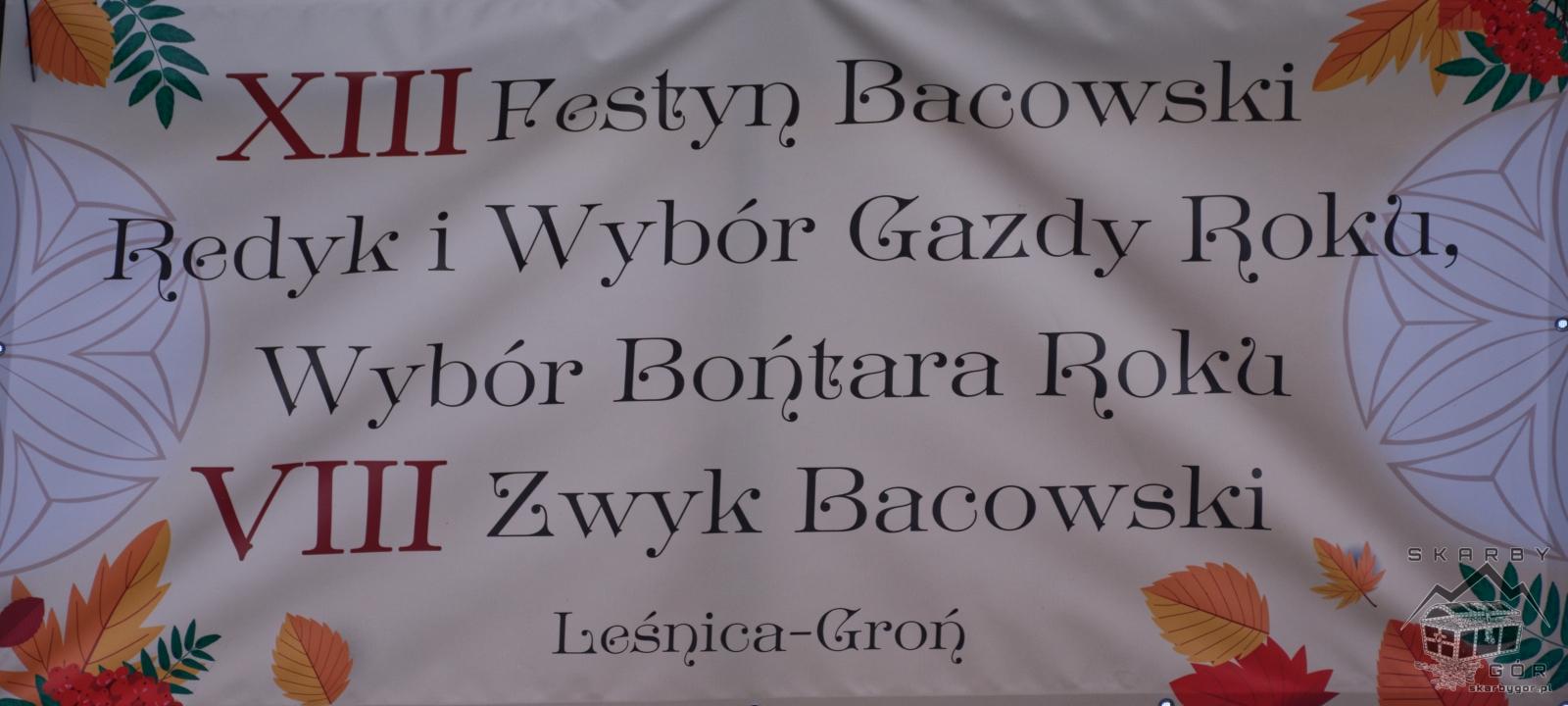 XIII Festyn Bacowski Leśnica 2018 DSC_3840_mini
