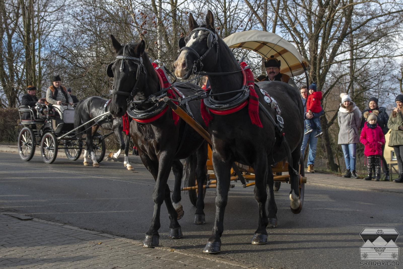 Poświęcenie koni w Ludźmierzu 2018
