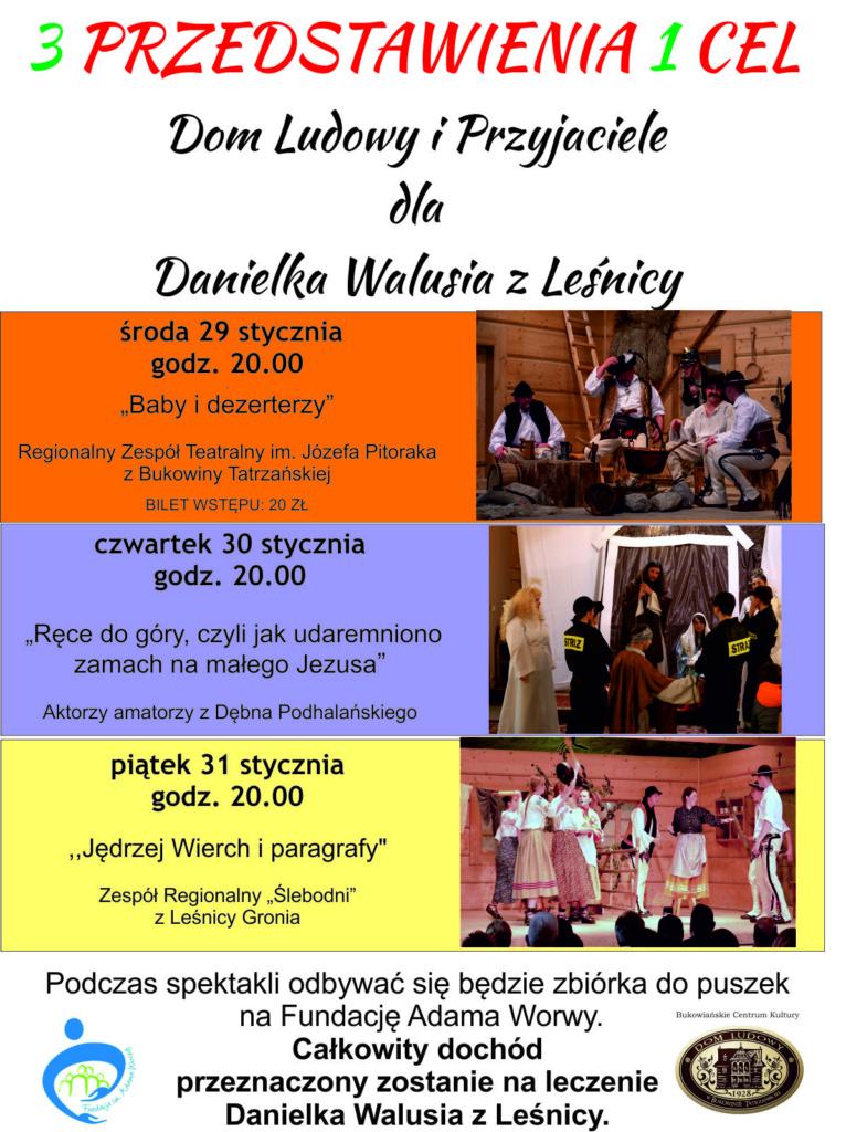 Dla Danielka Walusia - plakat